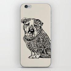 Polynesian English Bulldog iPhone & iPod Skin