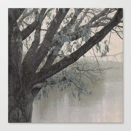 Tu-Endie-Wei Tree Canvas Print