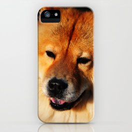 Do Not Disturb. Prince. Chow Chow Dog iPhone Case