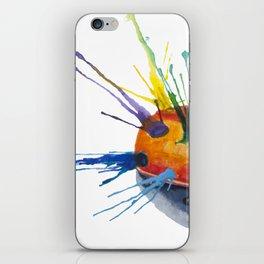 LadyBug Pride iPhone Skin