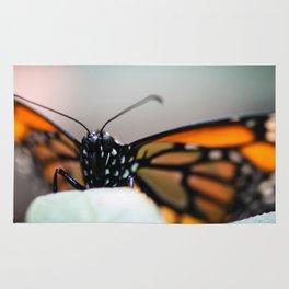 Monarch Danaus Plexippus Rug