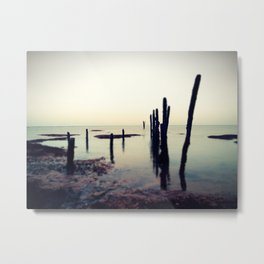 Exposed to the Elements Metal Print