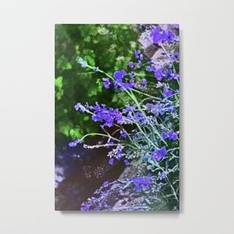 Lavender 4 Metal Print