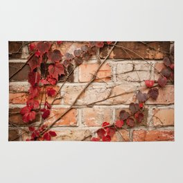 Red ivy leaves creeper on bricks wall Rug