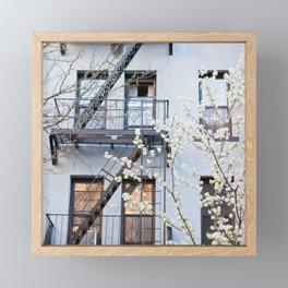Brooklyn Spring Framed Mini Art Print