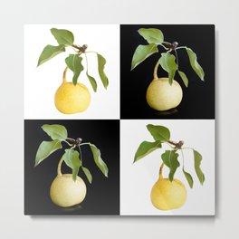 Wild pears Metal Print