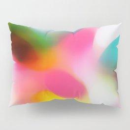Changing the Rain Pillow Sham