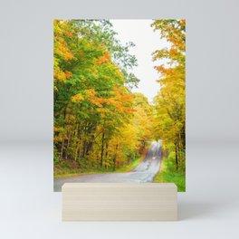 Country Road in Autumn Mini Art Print