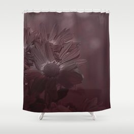 Old Style Daisies Shower Curtain