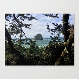 Natural Frame Canvas Print
