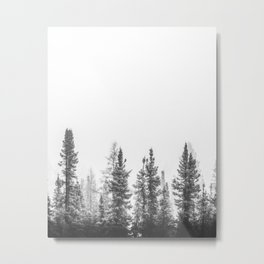 Winter forest trees #5 - Black and white Metal Print