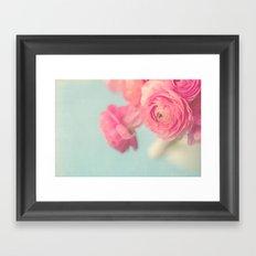 Cotton Candy, Pink Ranunculus Framed Art Print