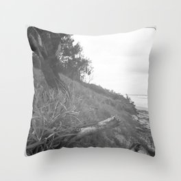 Silt and Pepper (part 2) Throw Pillow