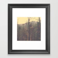 South Carolina Framed Art Print