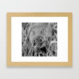 Door Mouse Framed Art Print