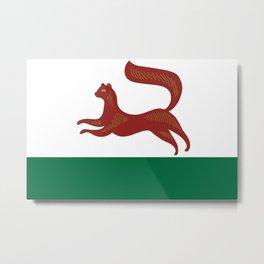 Flag of Ufa  Metal Print