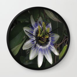 Delicate and Beautiful Passiflora Flower Wall Clock