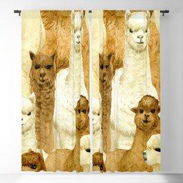 Watercolor cute alpacas pattern Blackout Curtain