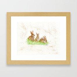 Hoppy Trio Bunnies - animal watercolor painting of rabbits Framed Art Print