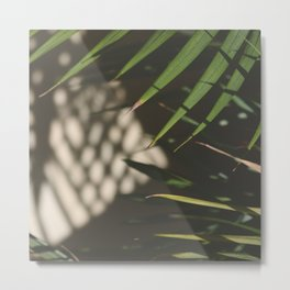 light, shadows, and leaves Metal Print