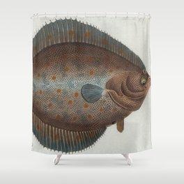 Vintage Illustration of a Flounder Fish (1785) Shower Curtain