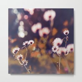 Tiny floral dreams of light Metal Print