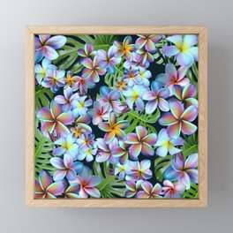 Rainbow Plumeria Dark Framed Mini Art Print