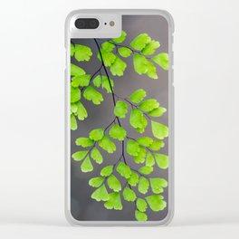 Maidenhair Fern on Gray Clear iPhone Case