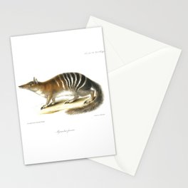 Numbat, striped anteater Stationery Cards