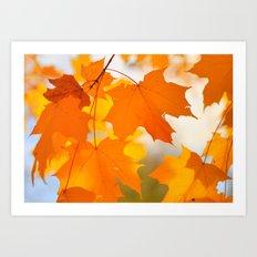Yellow-orange Autumn Art Print