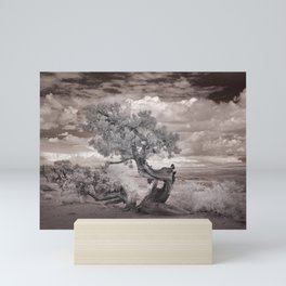 Infrared view of a twisted tree in the desert near the Salton Sea Mini Art Print