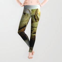 Rhino Family Leggings
