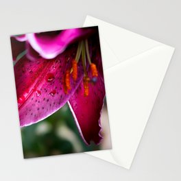 A wet Asiatic Lily Stationery Cards