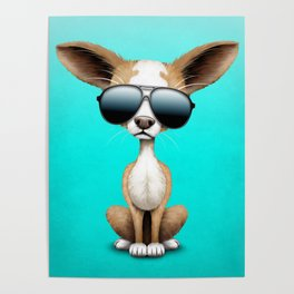 Cute Chihuahua Puppy Wearing Sunglasses Poster