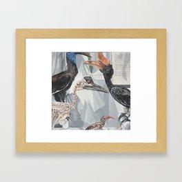 Hornbill Exhibit Framed Art Print