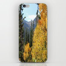 Autumn in the Rocky Mountains at Diamond Lake Trail, Eldora Colorado iPhone & iPod Skin