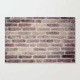 Wall built with bricks of various earth tones Canvas Print