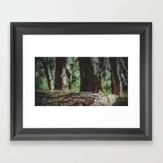 Droids in the forest Framed Art Print