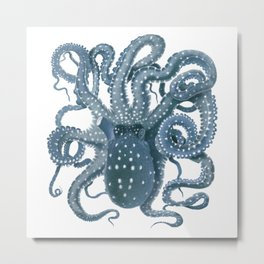 Octopoá Metal Print