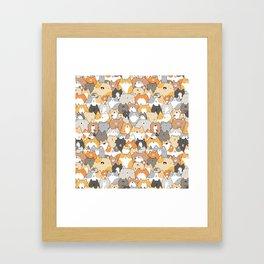 Cats, Kitties and a Spy Framed Art Print