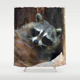 Raccoon Reclining Wildlife Photo Art Shower Curtain