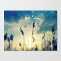 carpe diem Canvas Prints featuring Carpe Diem by Sandra Arduini