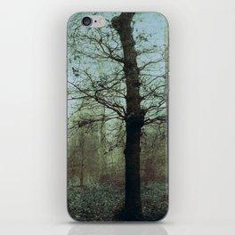 Un hiver iPhone Skin