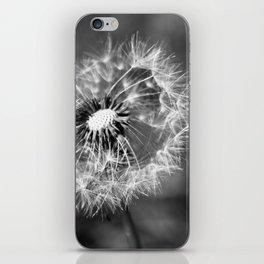 Dandelion & Autumn iPhone Skin