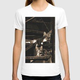 Back street Cats T-shirt