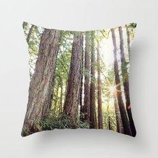 Sunlight Through Redwoods Throw Pillow