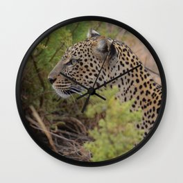 Leopard in the Wild Wall Clock