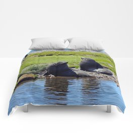 Fur Seals Comforters