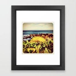 Dandelion - Instagram Framed Art Print