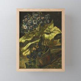 Cineraria by Vincent van Gogh Framed Mini Art Print